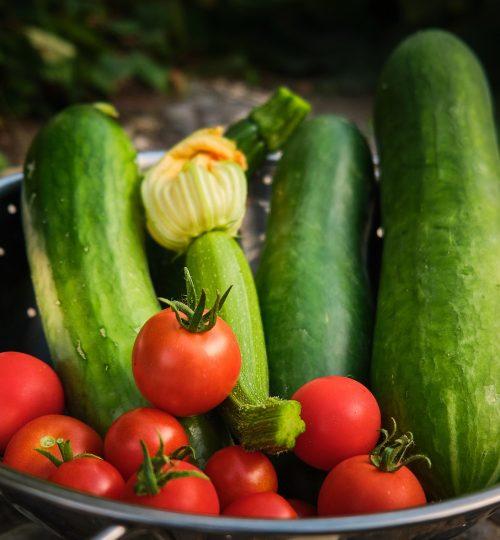Par ici la résilience légumes