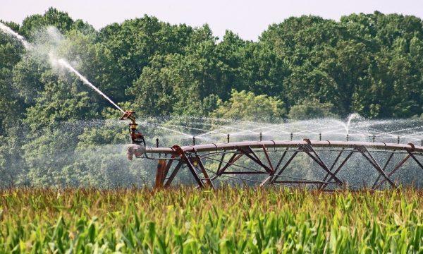 irrigation agriculture 2 Joseph Fulgham pixabay